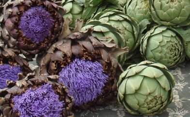 Unique items such as flowering artichoke available at Little Italy Mercato.