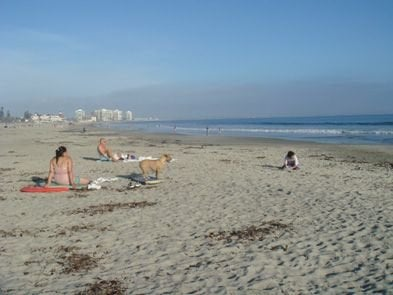 Coronado's Dog Beach is one of the best dog beaches in the world. White sand and extra clean.