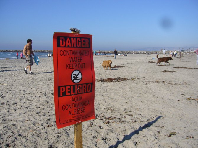 Dog Beach closed during Sewage Spill