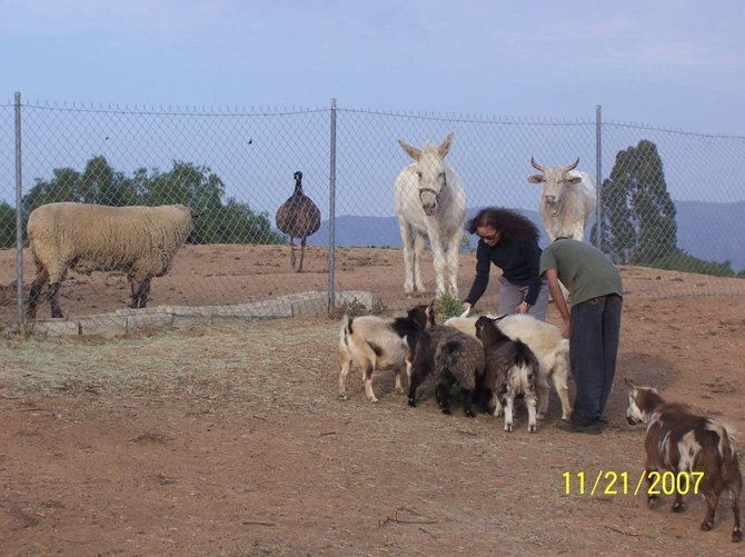 Life in Jamul. The power of giving!