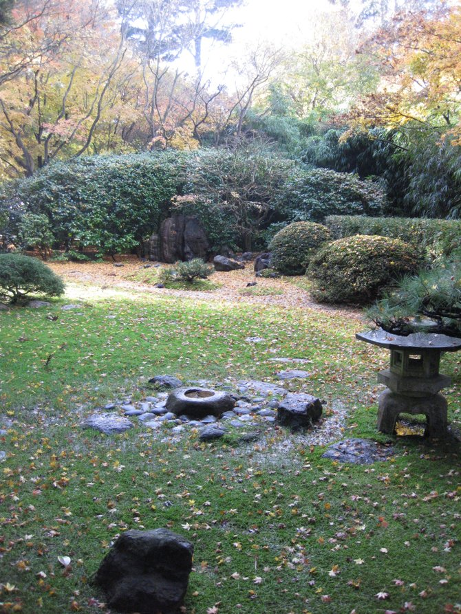 San Francisco Japanese Garden: Tranquility in the winter