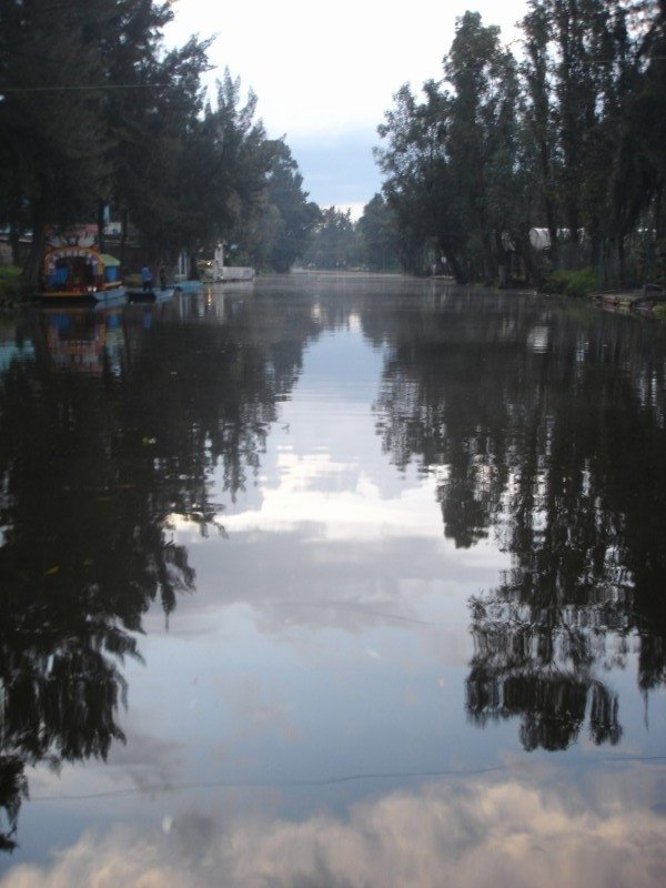 The Xochimilco Canal, Mexico: We were cruising on our raft in Xochimilco Mexico and I cought the reflection of the sky in the water.