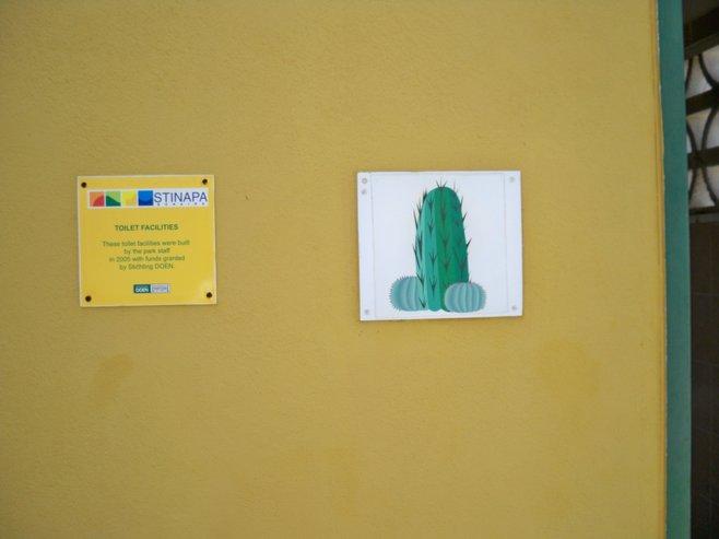 Bonaire photo