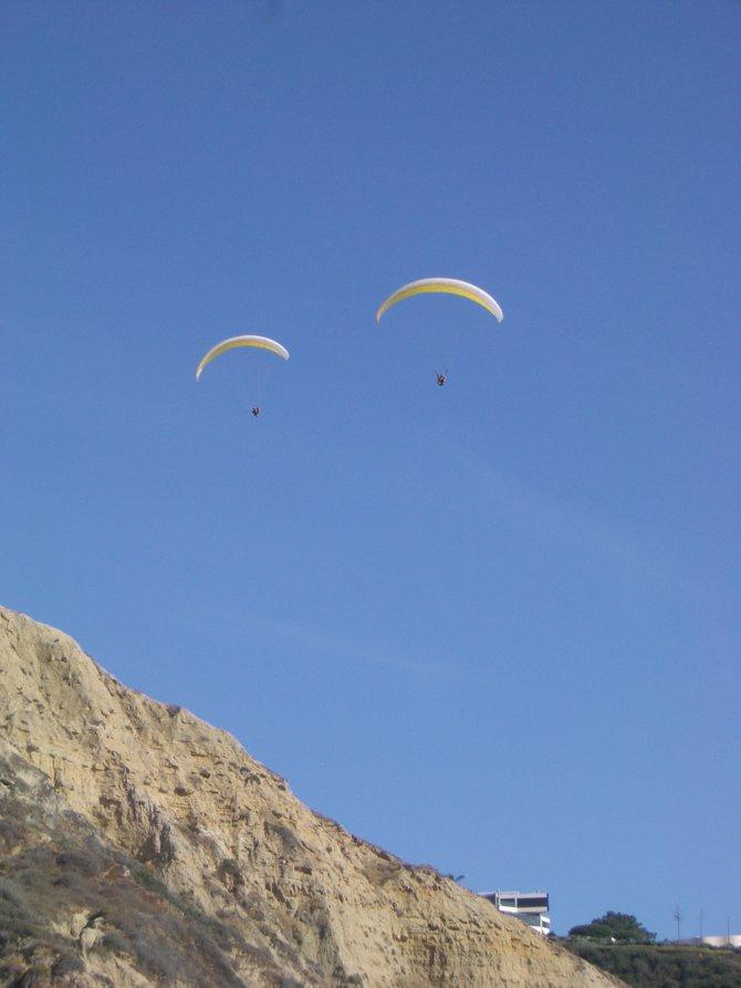 Paragliders near Torrey Pines Gliderport