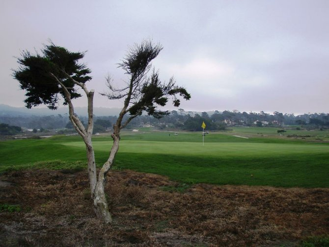 Pebble Beach Golf Course - the sun was peeking through the cloud and illuminating this perfect green.