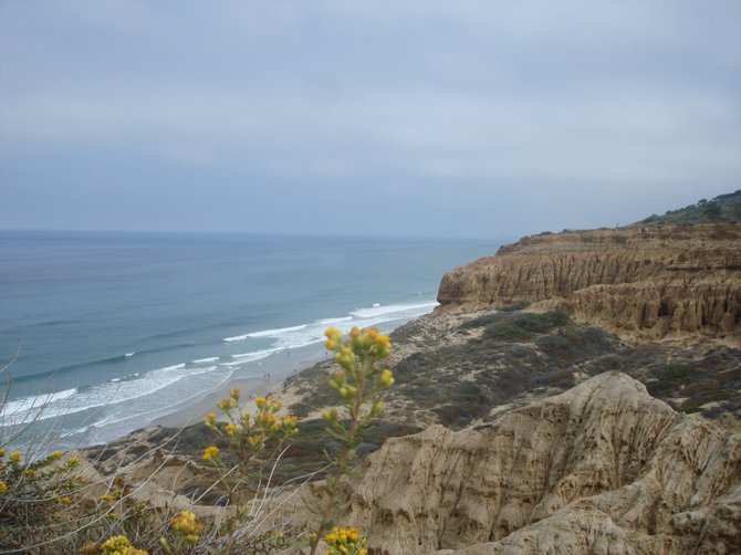 Sunday hike in Torrey Pines