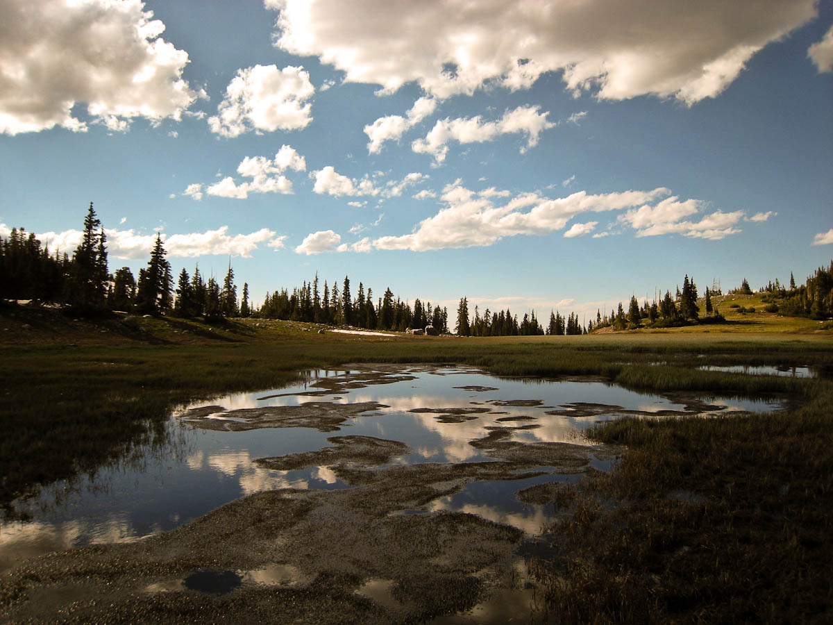 July was the perfect time to be stunned by the remainder of summer's snowmelt reflecting lilly-white clouds in Wyoming's Medicine Bow National Forest.