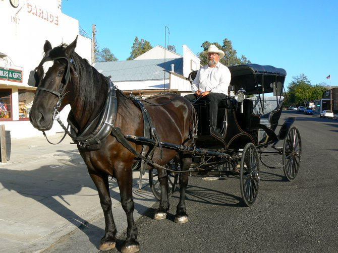 From Left to Right: Lincoln and Steve, Year-Round Horse and Carriage rides, Julian, CA
