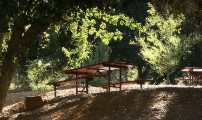 Picnic Table at Pinezanita Campground