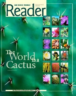 Cacti grow in buttons, angles, columns, cushions, cylinders, flat pads, pendants, globes, ovals, sprawls, tubers, pyramids, and treelike, shrublike, and rocklike forms.