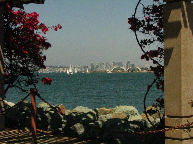 looking at the bay
