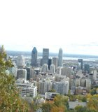 Panoramic shot of Downtown Montreal as seen from Mont Royal Park