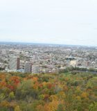 The colors of fall in Mont Royal Park, Montreal