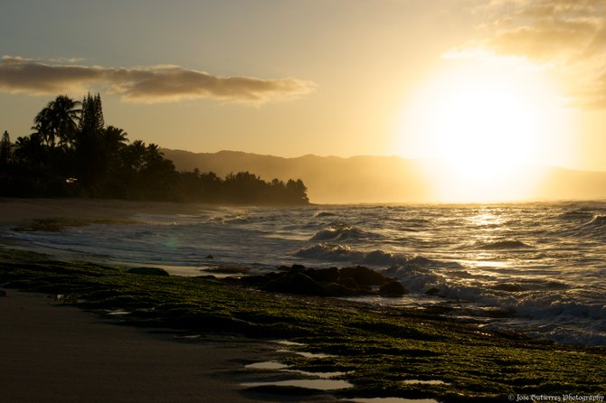 Shot taken last week on a trip to Haleiwa, Oahu, Hawaii. This is the same beach where my wife and I were married.