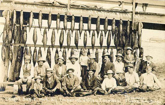 Check out this catch of albacore from the Imperial Beach pier, 1911. Farmers on a weekend journey from the Imperial Valley. Found photo in an old box at a friend's home.