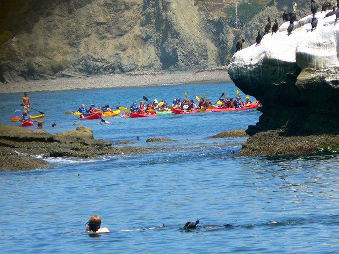 Kayaking, Snorkling & Sun Bathing: La Jolla Underwater Reserve, La Jolla, California