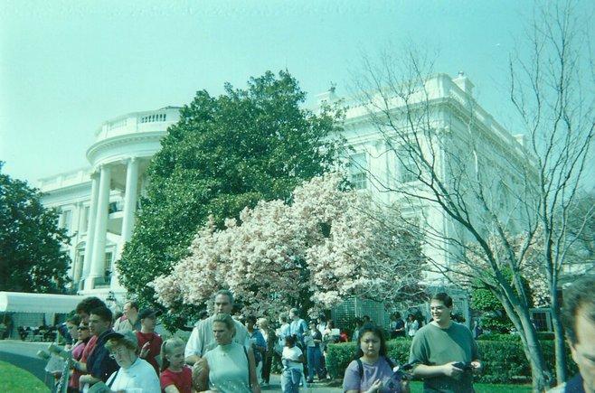 Washington, D.C. photo