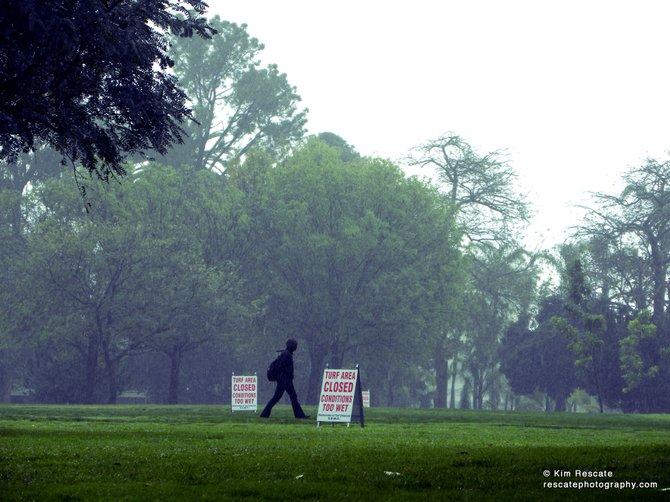 Balboa Park in the rain.