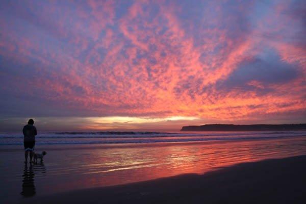 Coronado dog beach during an amazing sunset.