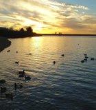 A gorgeous day at Miramar Lake.