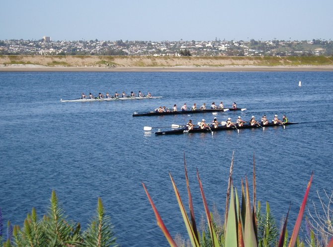 Rowers in the channel between Fiesta Island and Seaworld.