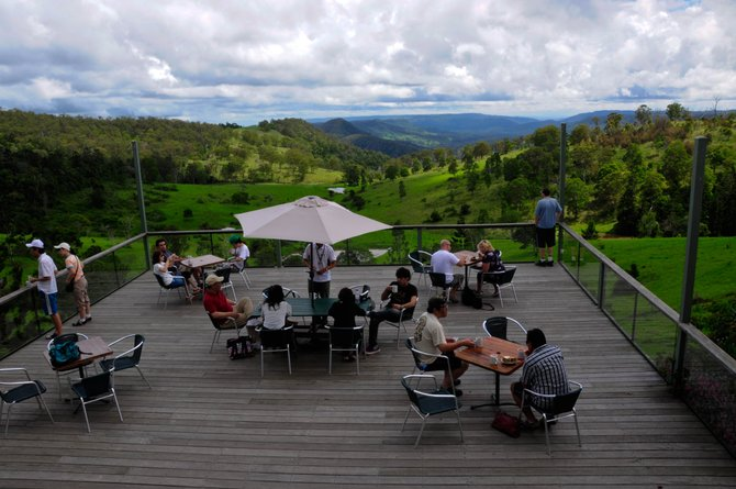 I took this at a little coffee shop on our day tour to Mt. Tambourine. The deck over looked miles and miles of green hills, and the people sipping their morning tea and coffee made this particular shot priceless to me.
