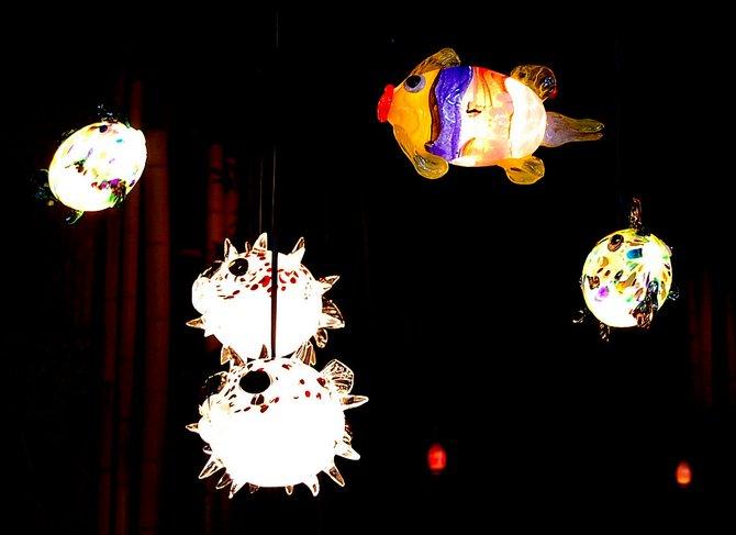 Lights in Mr. Tiki's