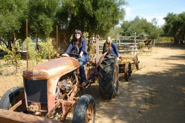 Old friends having fun on an old tractor at the Rancho Bernardo Winery.