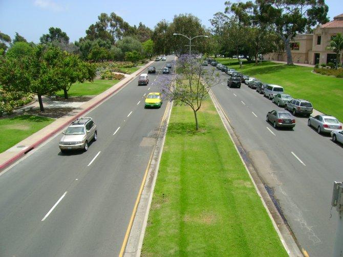 Balboa Park area