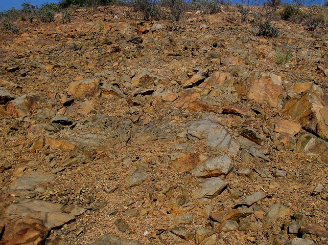 This exposed area of rock on Scripps Ranch Boulevard belongs to what geologists call Santiago Peak Volcanic rock and dates to 145 million years old.