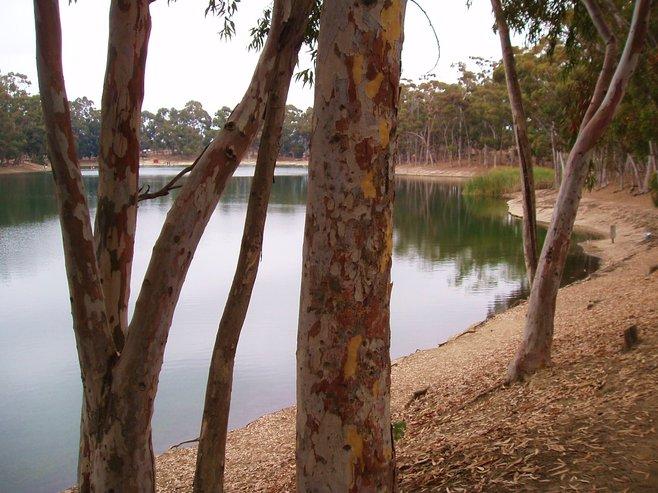 Oak Park photo