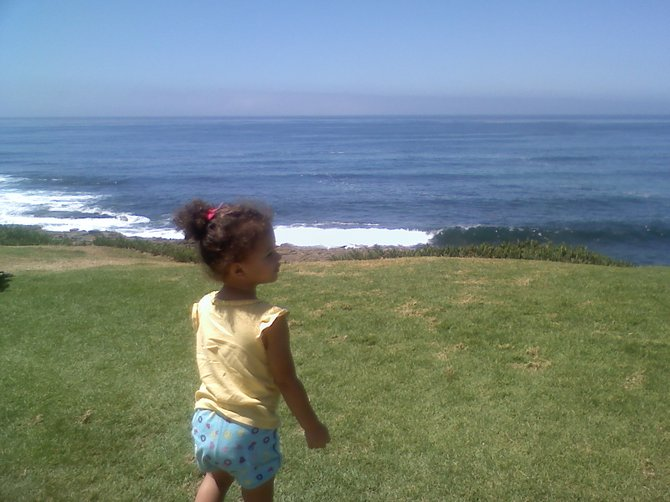 just another day at la jolla cove!