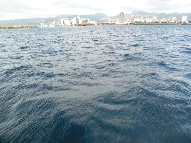 The coast of Honolulu