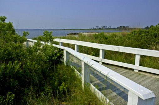 Walkway to the Bay in Delaware