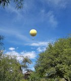 The balloon ride soars high above the Wild Animal Park.