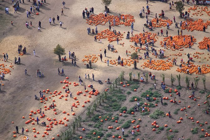 Aerial flight over Bates Nut Farm during Halloween week.  Shot with a Canon 50D from a Citabria, open window.