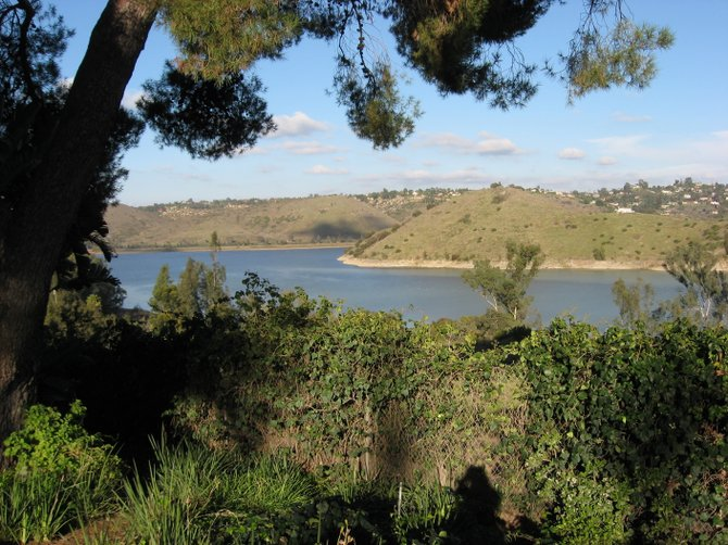 Photo of Lake Hodges taken today, Nov. 27, 2010.