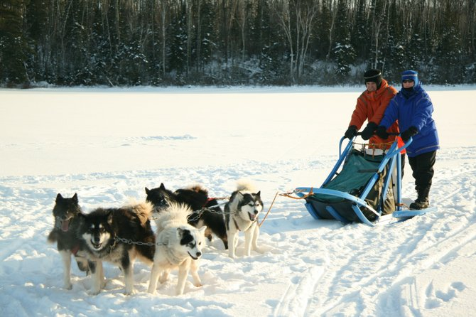 Dog Sledding in Ely, Minnesota.