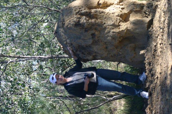 A termite mound in Cairns, Australia.