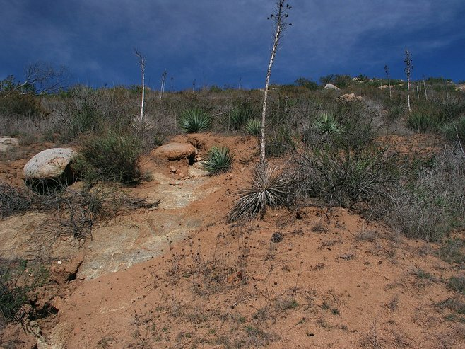 Carmel Mountain photo