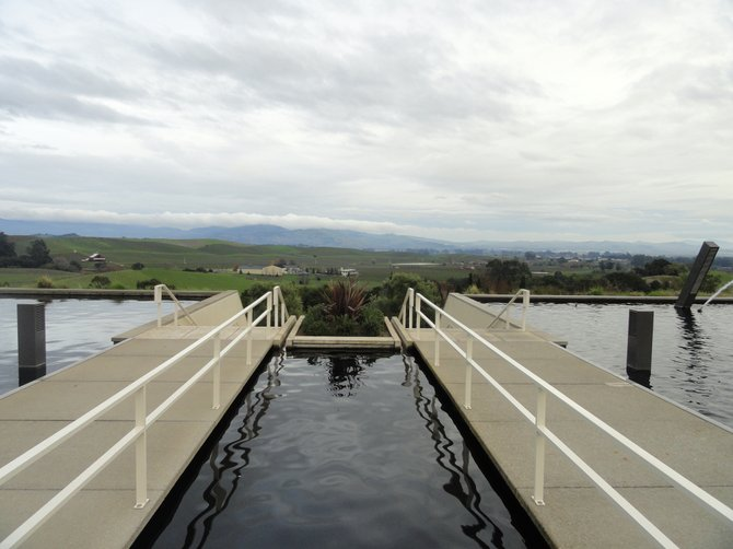 Looking out from the Artesa Winery.