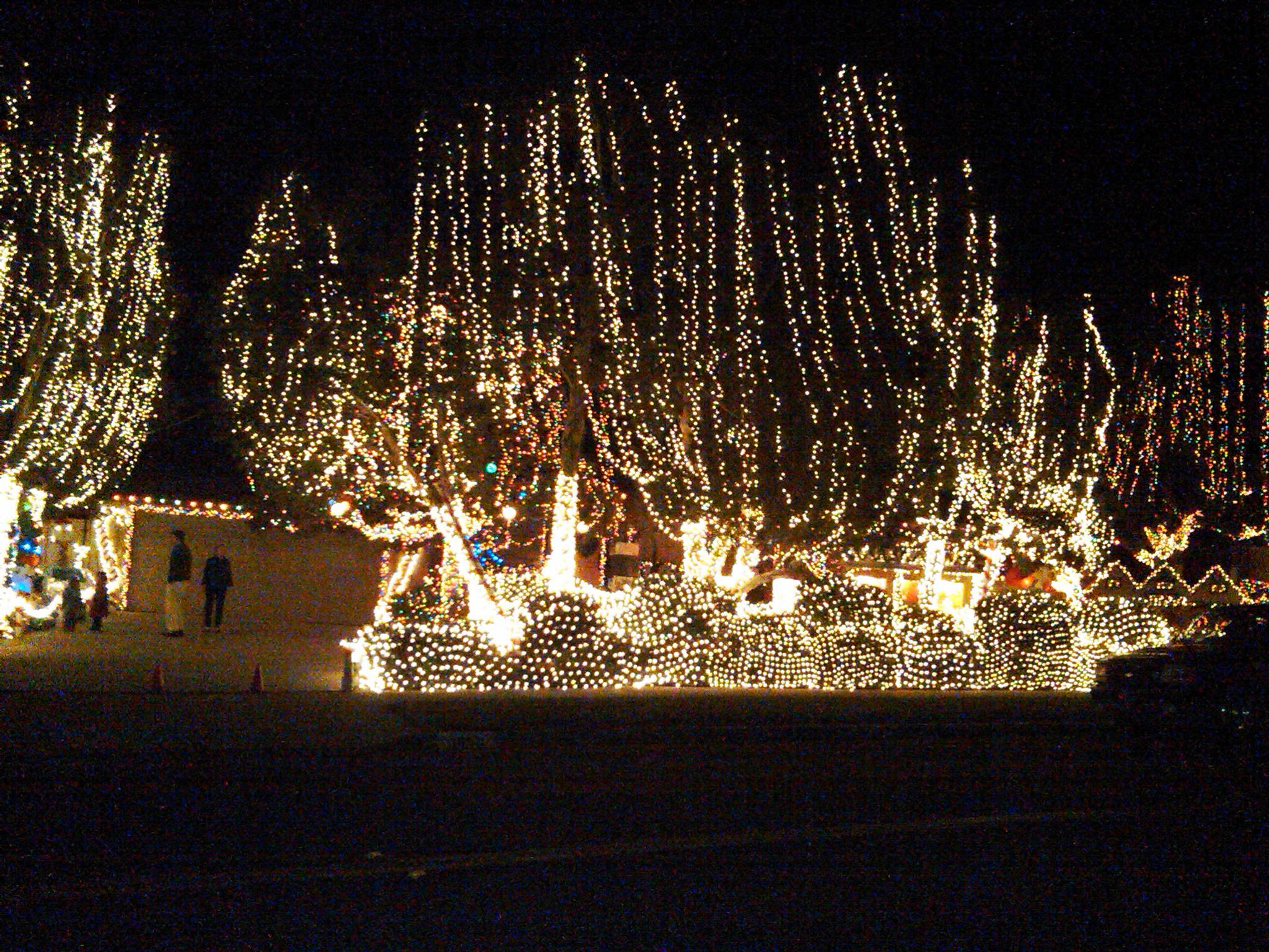 Garrison Street is a winter wonderland in December!