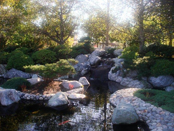 Japanese Friendship Garden, Balboa Park