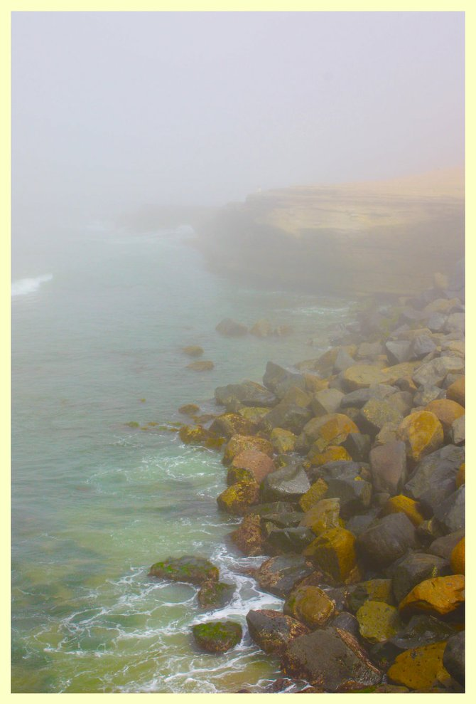 Shot this photo on a walk around Sunset Cliffs on a beautiful Foggy day.