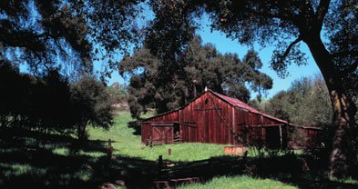 Old barn at Daley Ranch