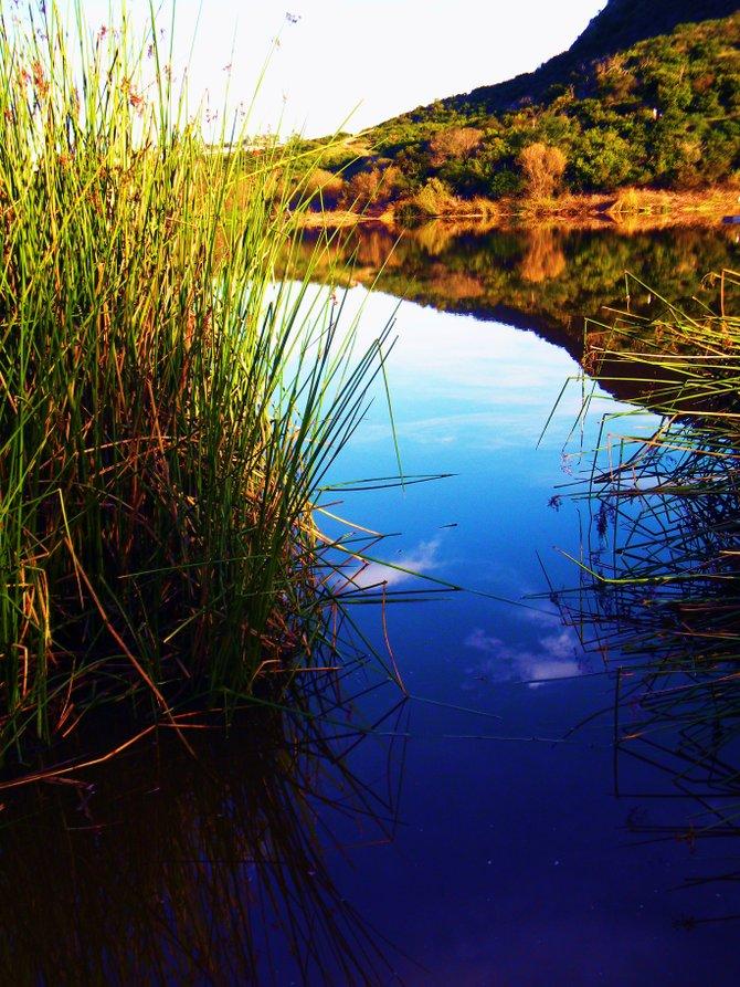 Calavera Hills, Carlsbad