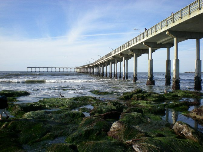 I took this photo of the Ocean Beach pier on New Year's Day 2011.The tide was very low on this beautiful day.