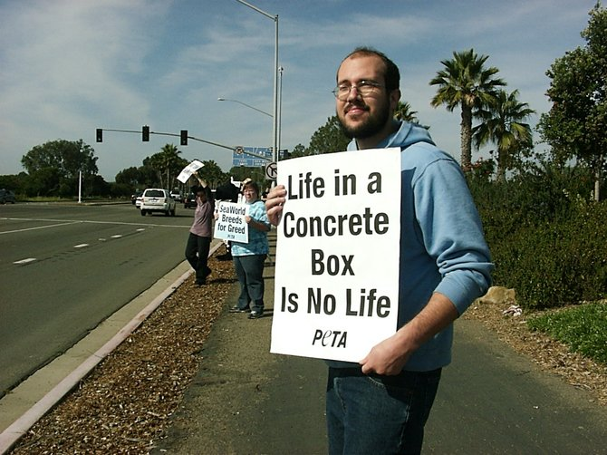 An activist holding a sign on Sea World Drive, Feb. 5, 2011.