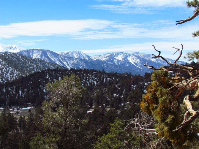 I shot this photograph on our way down from Big Bear Mountain on Scenic HWY 38.