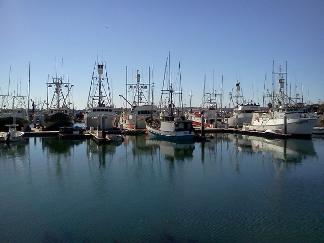 Fishing boats lined up next to Tuna Park just north of Seaport Village